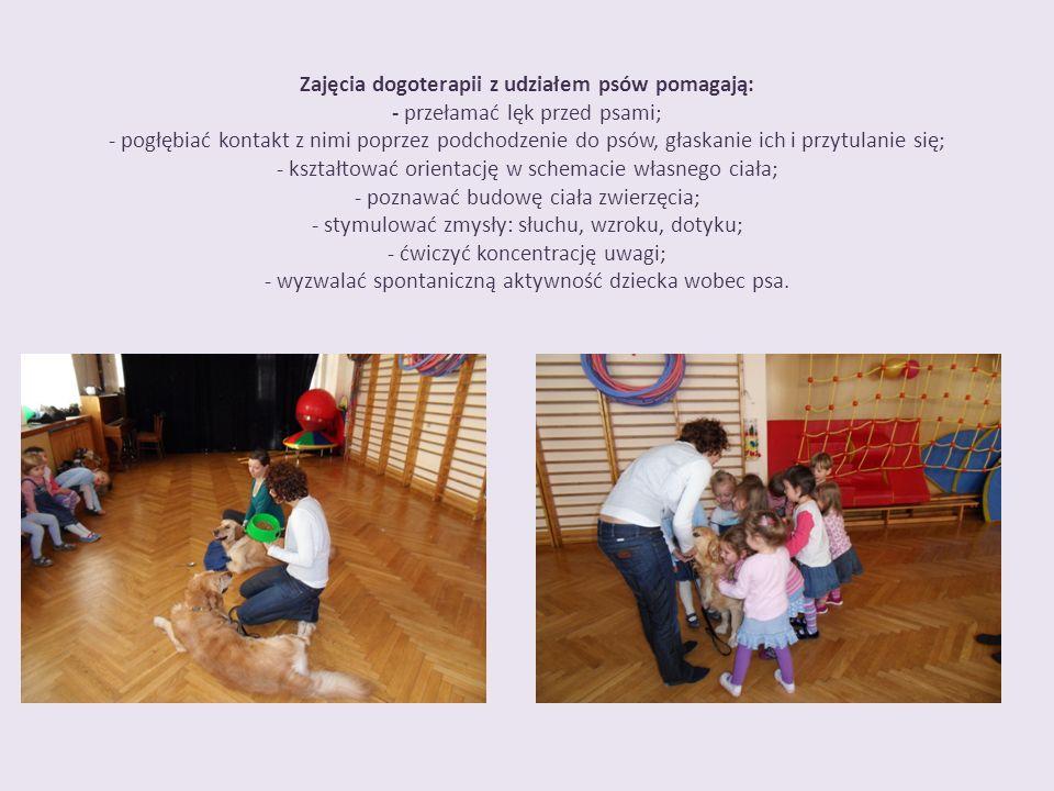 Zajęcia dogoterapii z udziałem psów pomagają: - przełamać lęk przed psami; - pogłębiać kontakt z nimi poprzez podchodzenie do psów, głaskanie ich i pr