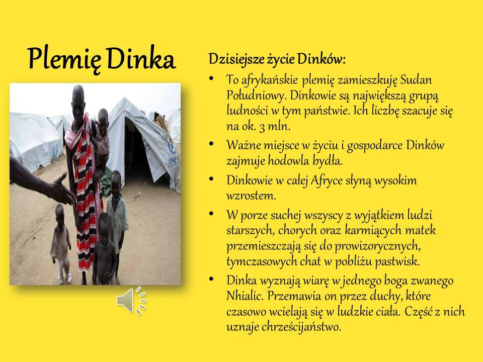 Mea z plemienia Dinka Mea była murzyńską służącą pochodzącą z plemienia Dinka. Miała długie nogi, była smukła i szczupła. Została ofiarowana Nel przez