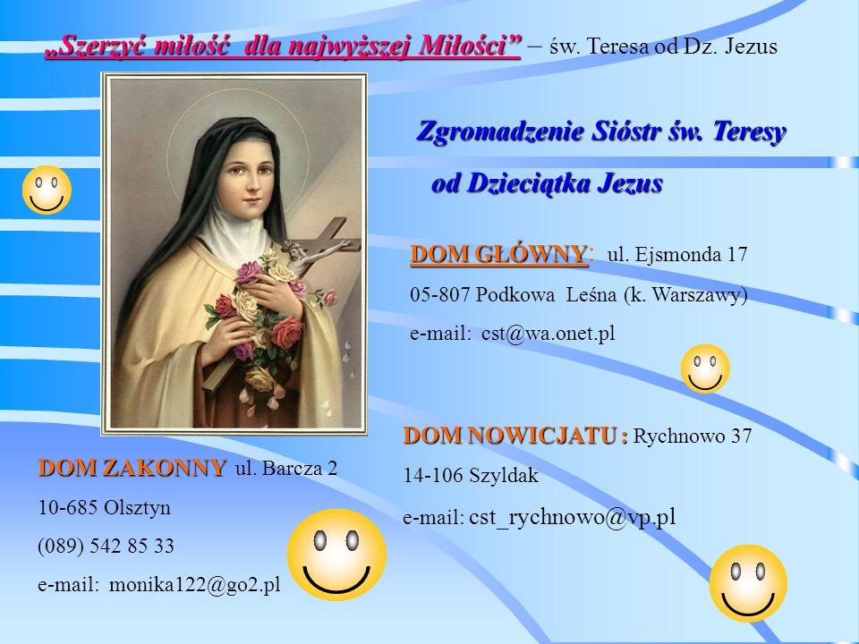 Szerzyć miłość dla najwyższej Miłości – św. Teresa od Dz.