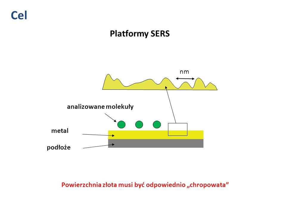 Metoda 1.Mikro-kwiatki 2.Nanocząstki 200 nm
