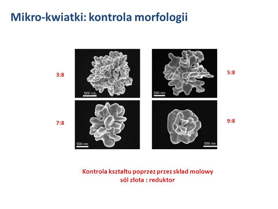 Kontrola kształtu przez czas zanurzenia krótki czas ( 10 min.)długi czas ( 24 h) Mikro-kwiatki: kontrola morfologii