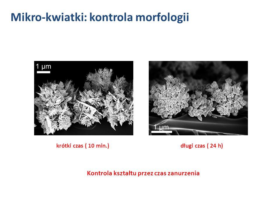 Możliwość modyfikacji różnych podłoży szkło GaN ITO aluminium Mikro-kwiatki: podłoża