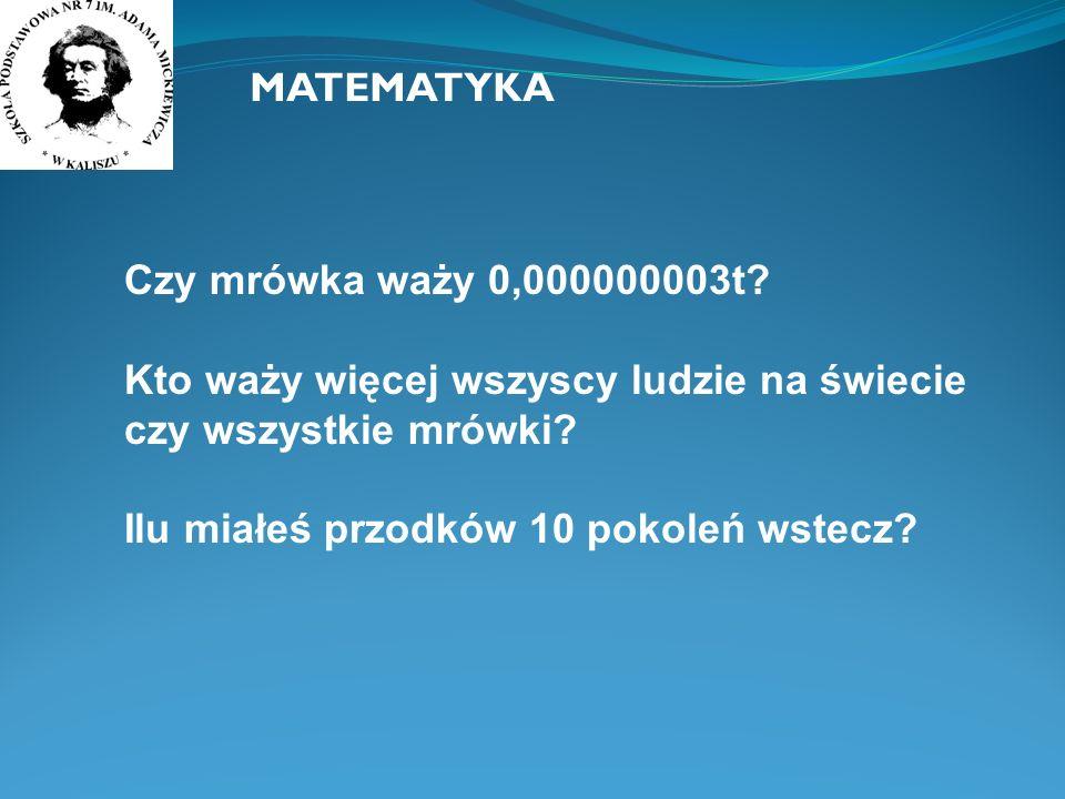 MATEMATYKA Czy mrówka waży 0,000000003t.