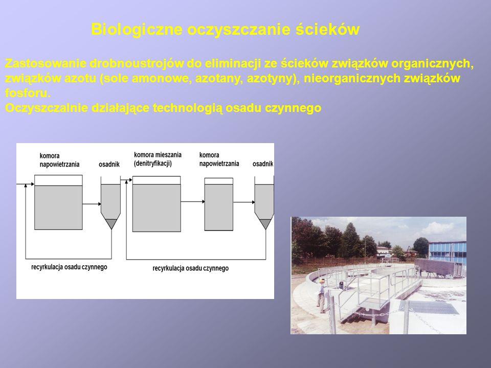 Biologiczne oczyszczanie ścieków Zastosowanie drobnoustrojów do eliminacji ze ścieków związków organicznych, związków azotu (sole amonowe, azotany, az