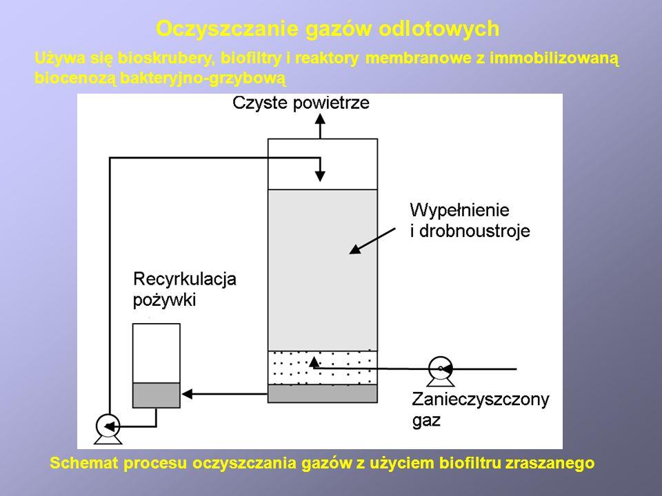 Oczyszczanie gazów odlotowych Schemat procesu oczyszczania gazów z użyciem biofiltru zraszanego Używa się bioskrubery, biofiltry i reaktory membranowe