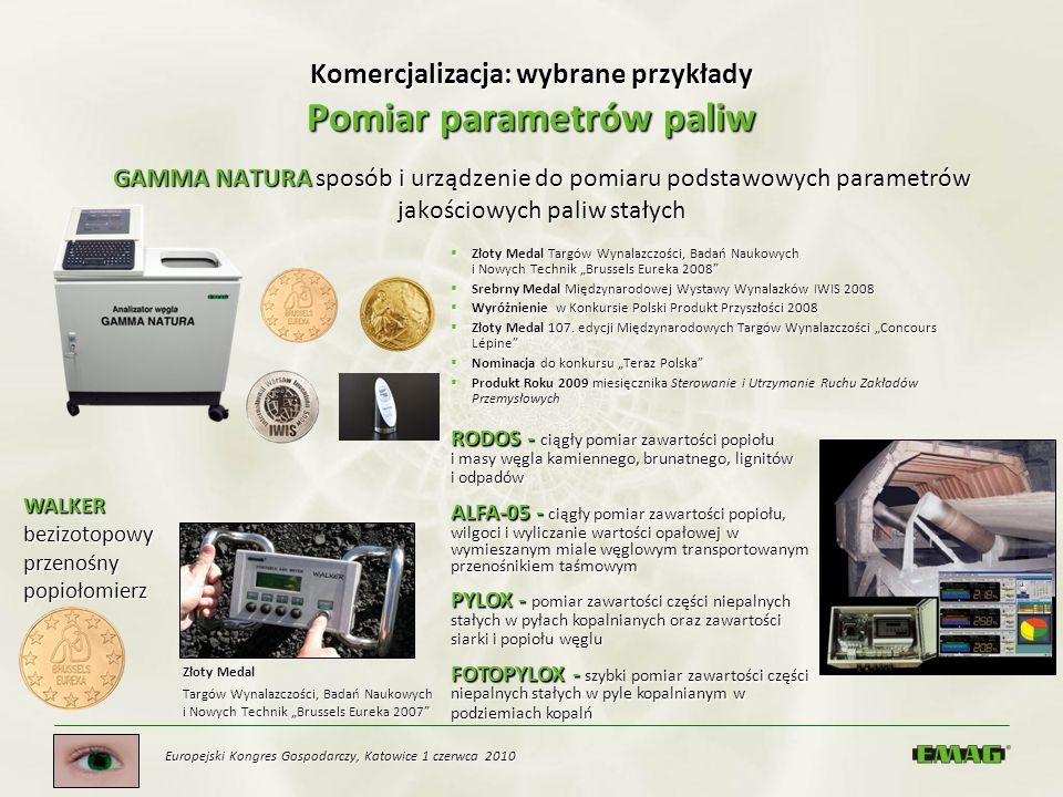 Europejski Kongres Gospodarczy, Katowice 1 czerwca 2010 Komercjalizacja: wybrane przykłady Pomiar parametrów paliw GAMMA NATURA sposób i urządzenie do