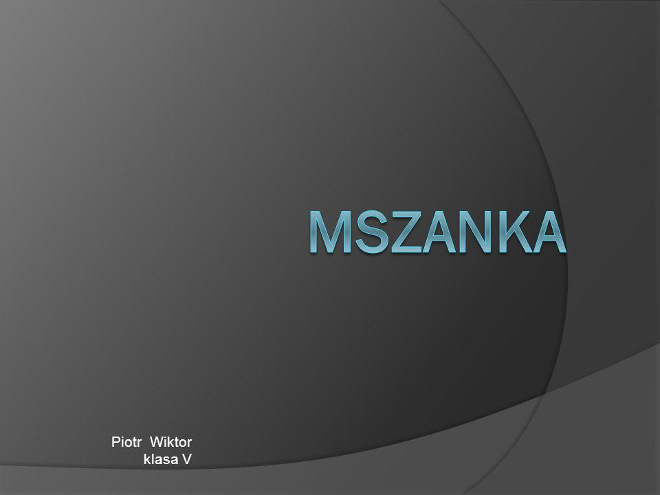 Mszanka is a small village.It is situated in the south-est of Poland.
