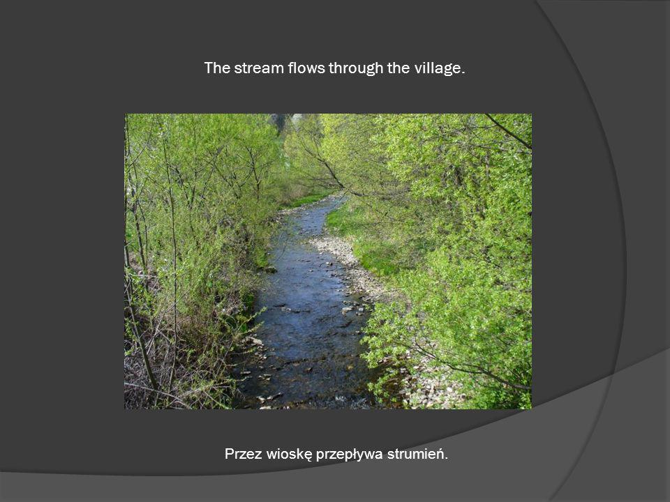 The stream flows through the village. Przez wioskę przepływa strumień.
