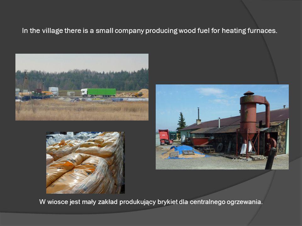 In the village there is a small company producing wood fuel for heating furnaces. W wiosce jest mały zakład produkujący brykiet dla centralnego ogrzew