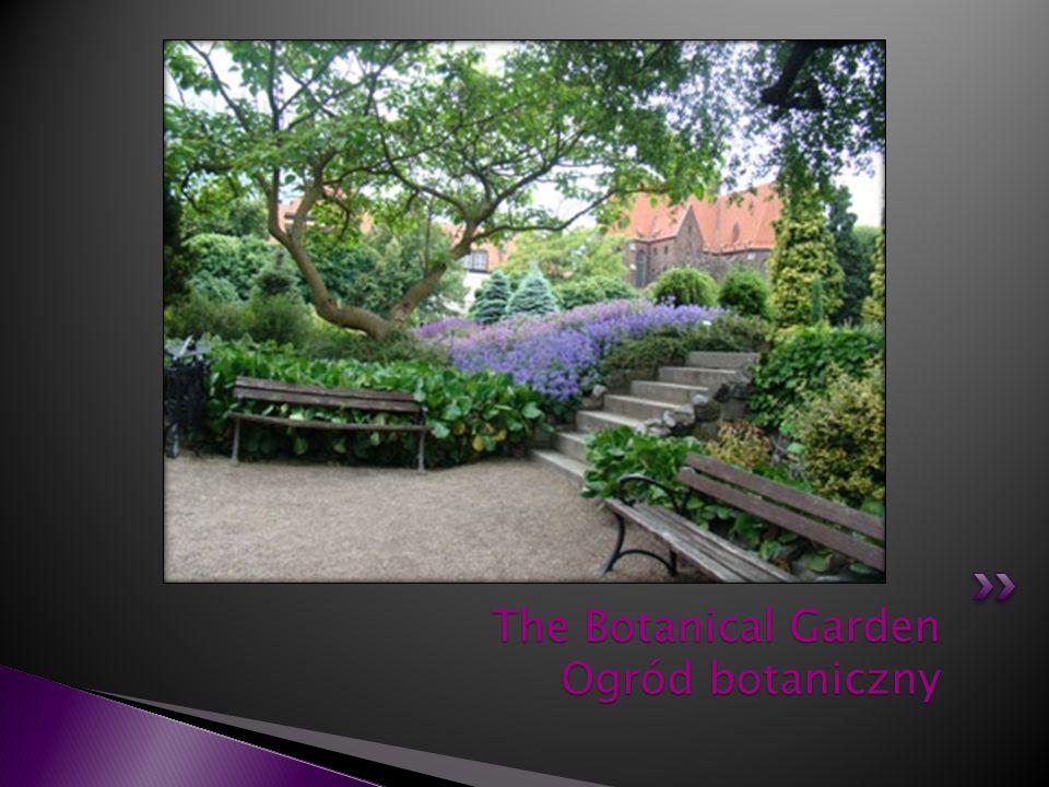 The Botanical Garden Ogród botaniczny