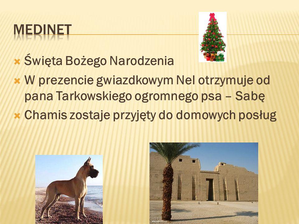 Święta Bożego Narodzenia W prezencie gwiazdkowym Nel otrzymuje od pana Tarkowskiego ogromnego psa – Sabę Chamis zostaje przyjęty do domowych posług