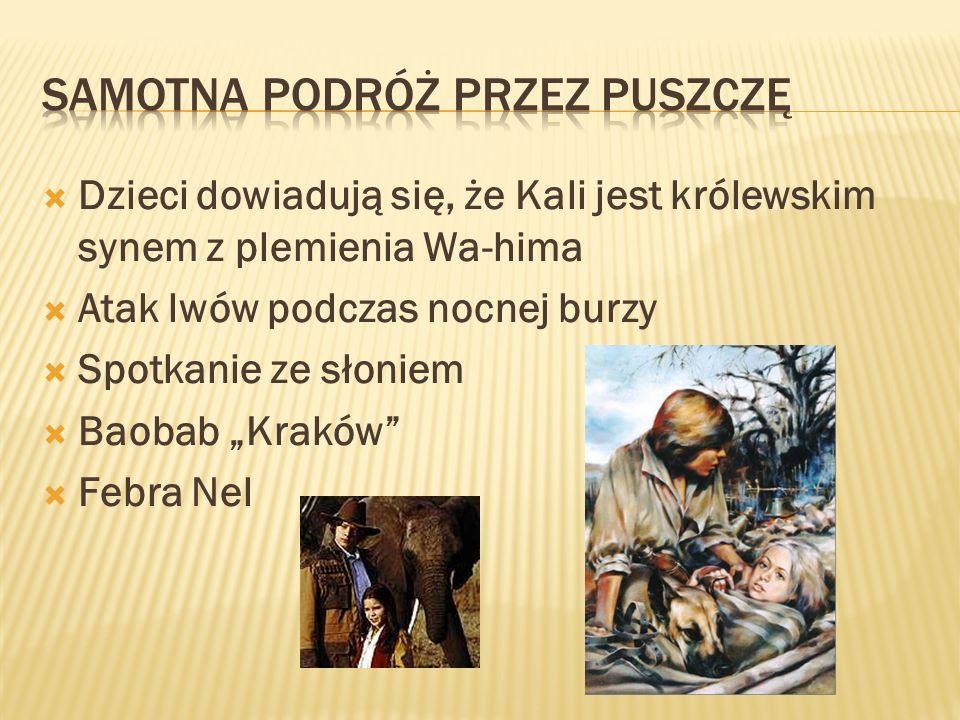 Dzieci dowiadują się, że Kali jest królewskim synem z plemienia Wa-hima Atak lwów podczas nocnej burzy Spotkanie ze słoniem Baobab Kraków Febra Nel