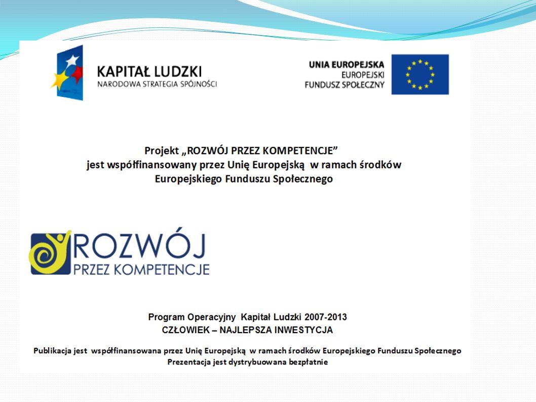 Celem głównym projektu jest: rozwój kompetencji z przedsiębiorczości u 10 uczniów klas pierwszych Gimnazjum w Bysławiu, stanowiących zespół projektowy, na poziomie dającym im odpowiednie przygotowanie do dalszej nauki w obszarze edukacji związanej przedsiębiorczością.