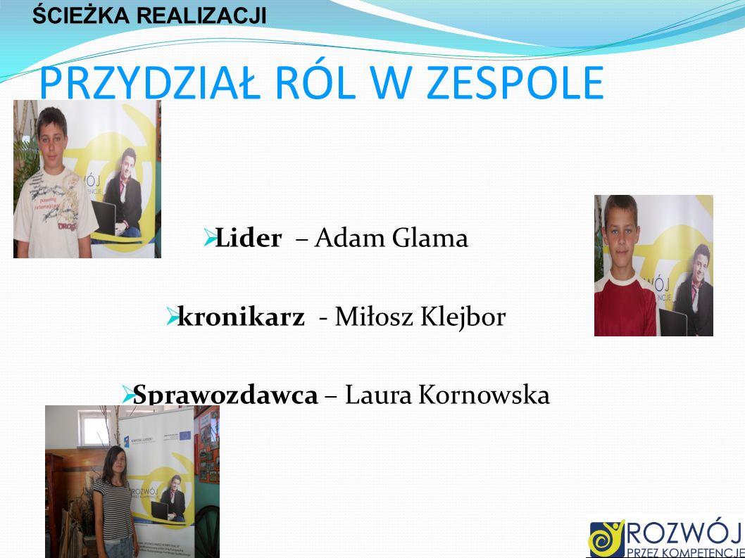PRZYDZIAŁ RÓL W ZESPOLE Lider – Adam Glama kronikarz - Miłosz Klejbor Sprawozdawca – Laura Kornowska ŚCIEŻKA REALIZACJI