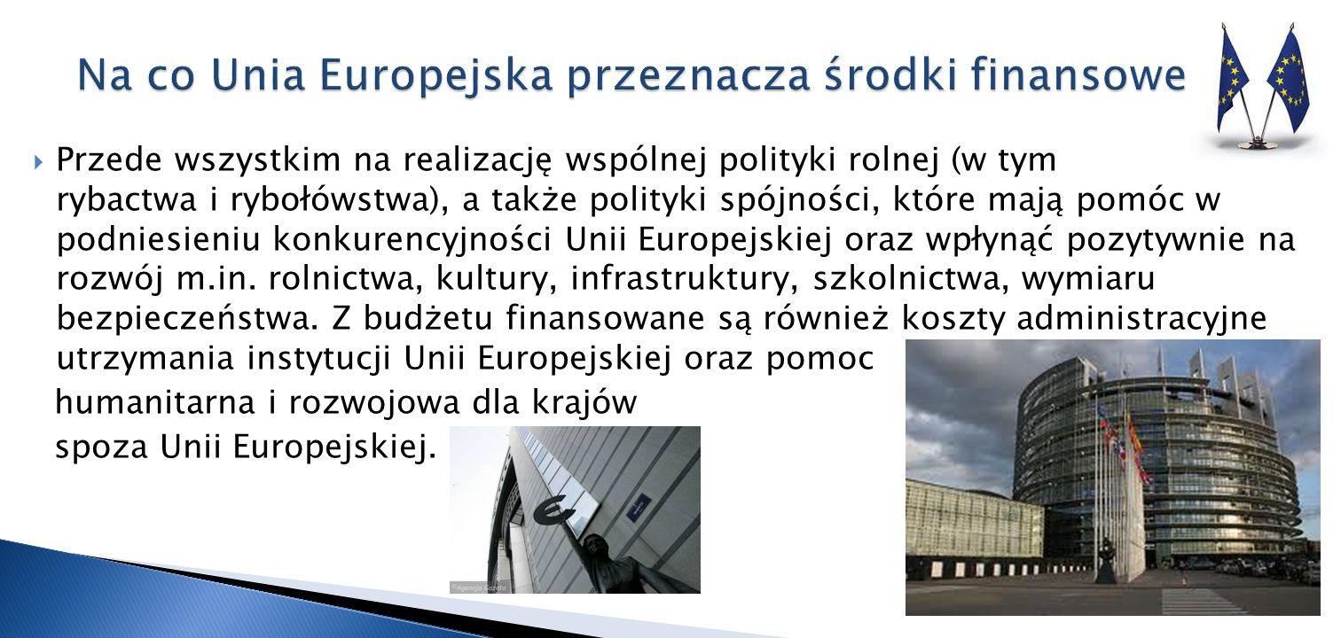 Przede wszystkim na realizację wspólnej polityki rolnej (w tym rybactwa i rybołówstwa), a także polityki spójności, które mają pomóc w podniesieniu ko
