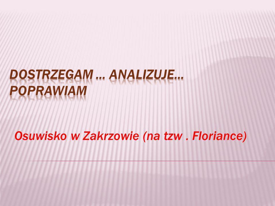 Osuwisko w Zakrzowie (na tzw. Floriance)
