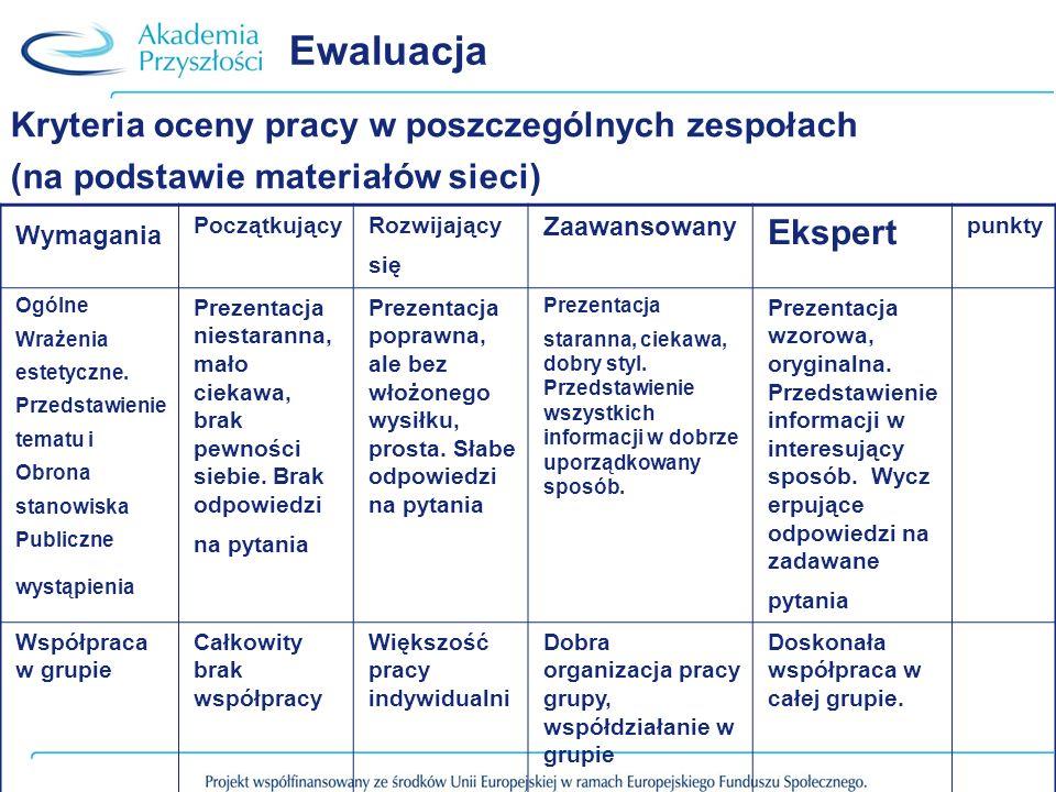 Ewaluacja Kryteria oceny pracy w poszczególnych zespołach (na podstawie materiałów sieci) Wymagania PoczątkującyRozwijający się Zaawansowany Ekspert p