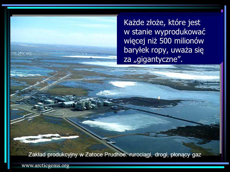 Każde złoże, które jest w stanie wyprodukować więcej niż 500 milionów baryłek ropy, uważa się za gigantyczne. Zakład produkcyjny w Zatoce Prudhoe: rur