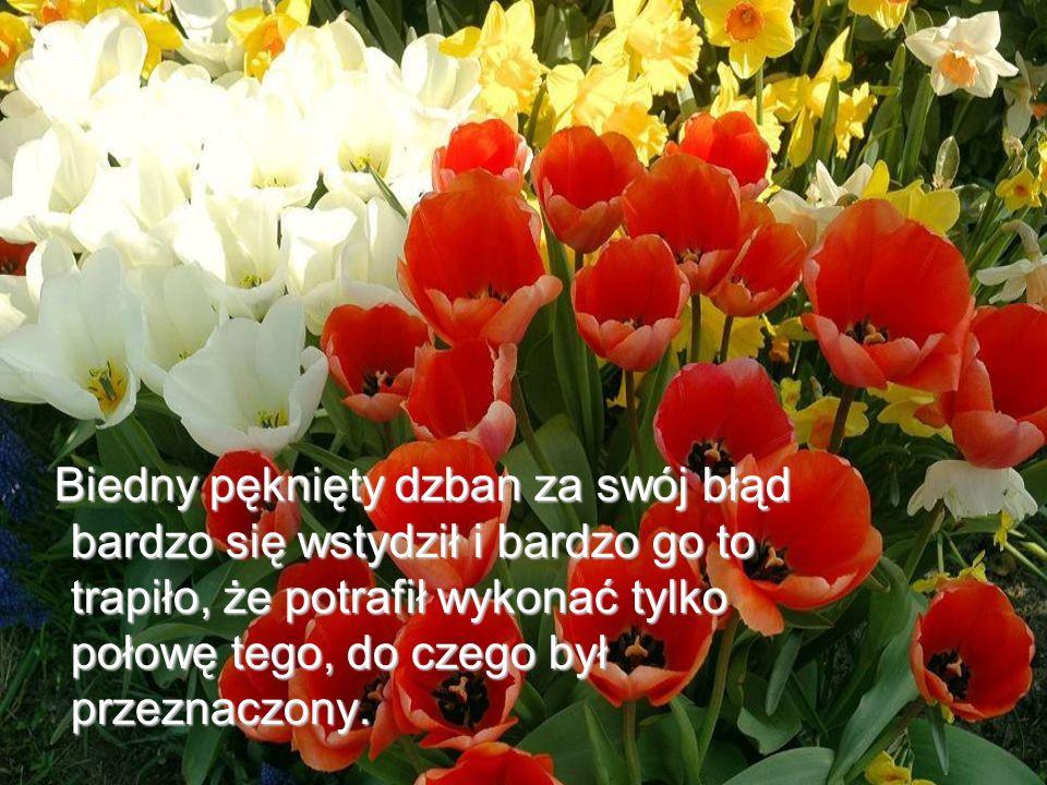 Życzę miłego dnia i nie zapominajcie kosztować woni i piękna kwiatów po Waszej stronie ścieżki.