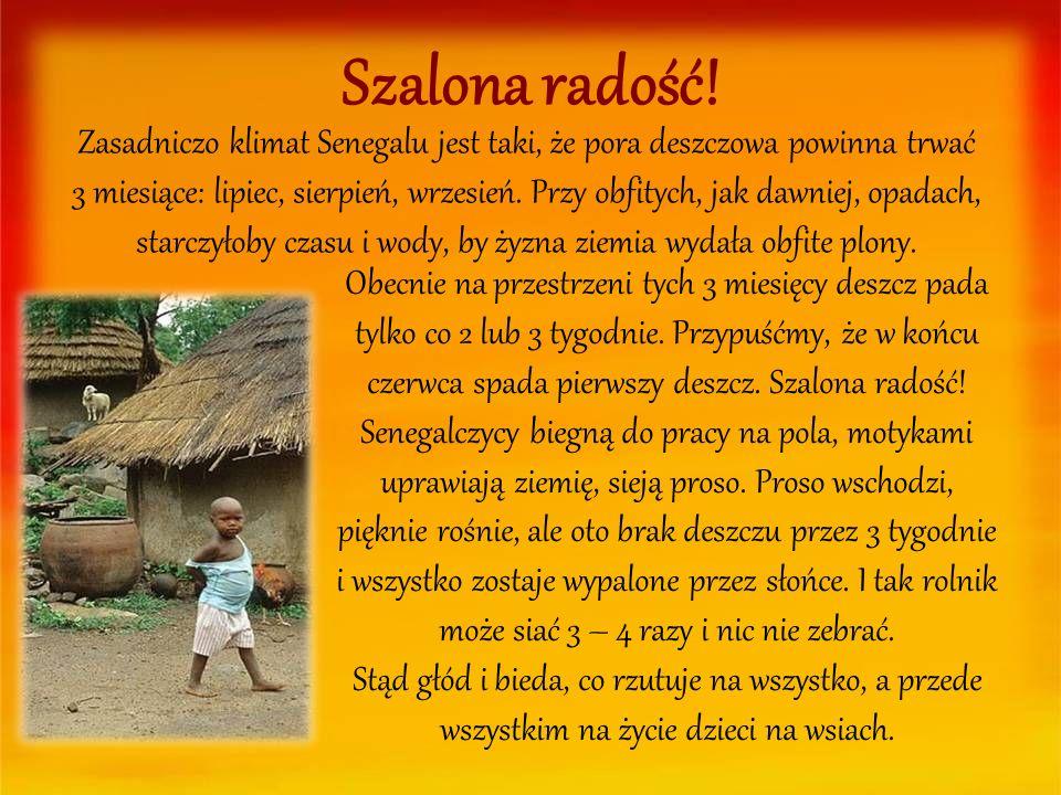 Szalona radość! Zasadniczo klimat Senegalu jest taki, że pora deszczowa powinna trwać 3 miesiące: lipiec, sierpień, wrzesień. Przy obfitych, jak dawni