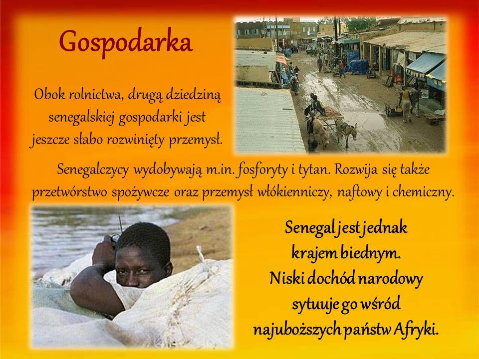 Obok rolnictwa, drugą dziedziną senegalskiej gospodarki jest jeszcze słabo rozwinięty przemysł. Gospodarka Senegal jest jednak krajem biednym. Niski d
