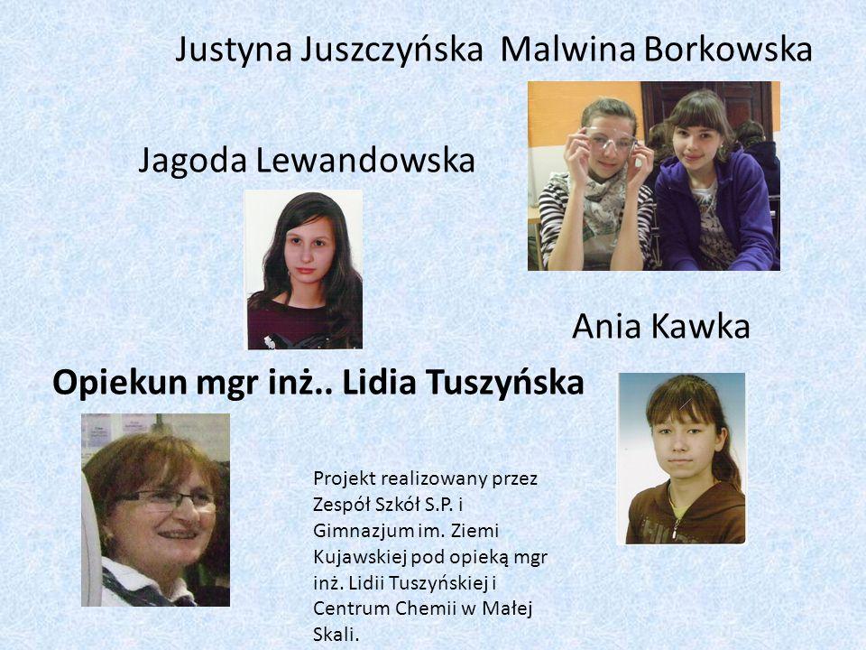 Justyna Juszczyńska Malwina Borkowska Jagoda Lewandowska Ania Kawka Opiekun mgr inż.. Lidia Tuszyńska Projekt realizowany przez Zespół Szkół S.P. i Gi