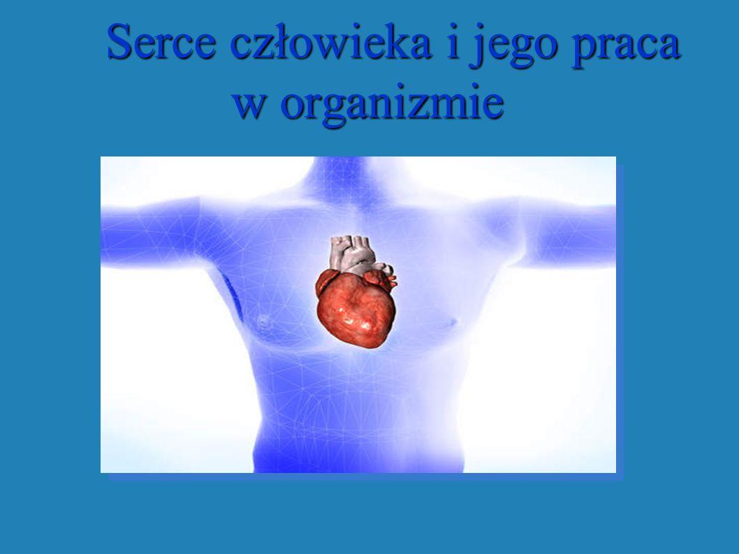 Serce człowieka i jego praca w organizmie Serce człowieka i jego praca w organizmie