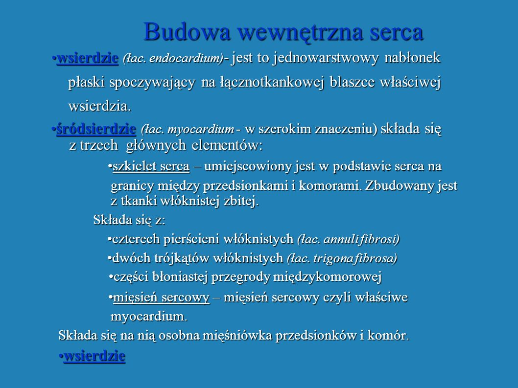 Budowa wewnętrzna serca Budowa wewnętrzna serca wsierdzie (łac. endocardium) - jest to jednowarstwowy nabłonek wsierdzie (łac. endocardium) - jest to