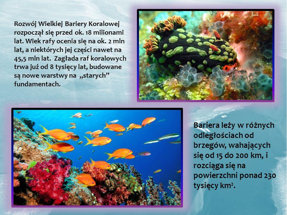 Rozwój Wielkiej Bariery Koralowej rozpoczął się przed ok. 18 milionami lat. Wiek rafy ocenia się na ok. 2 mln lat, a niektórych jej części nawet na 45