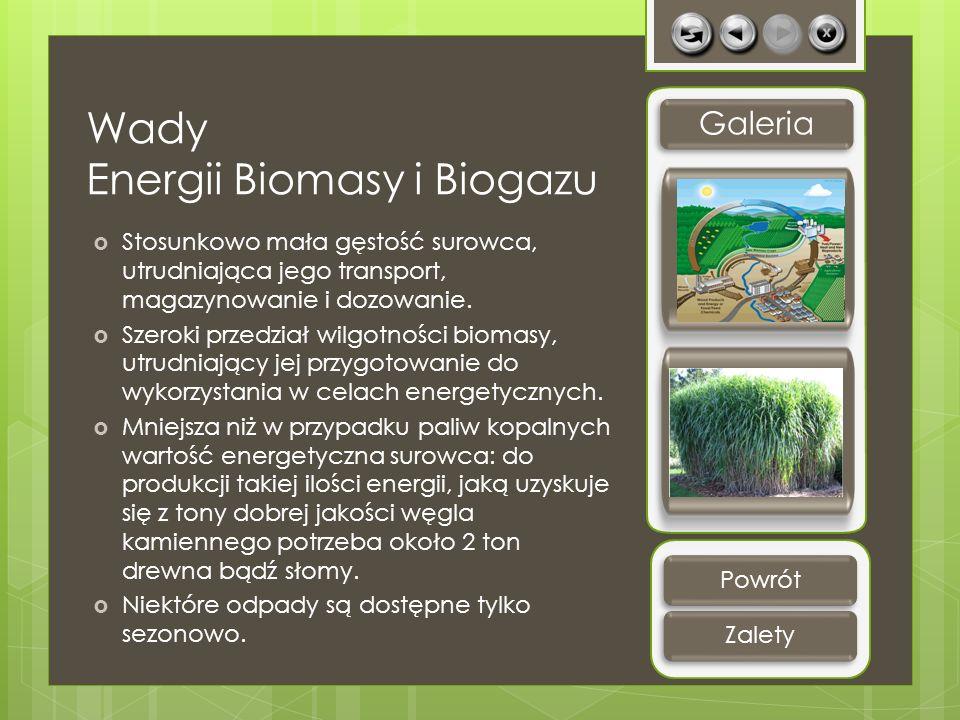 Wady Energii Biomasy i Biogazu Stosunkowo mała gęstość surowca, utrudniająca jego transport, magazynowanie i dozowanie. Szeroki przedział wilgotności