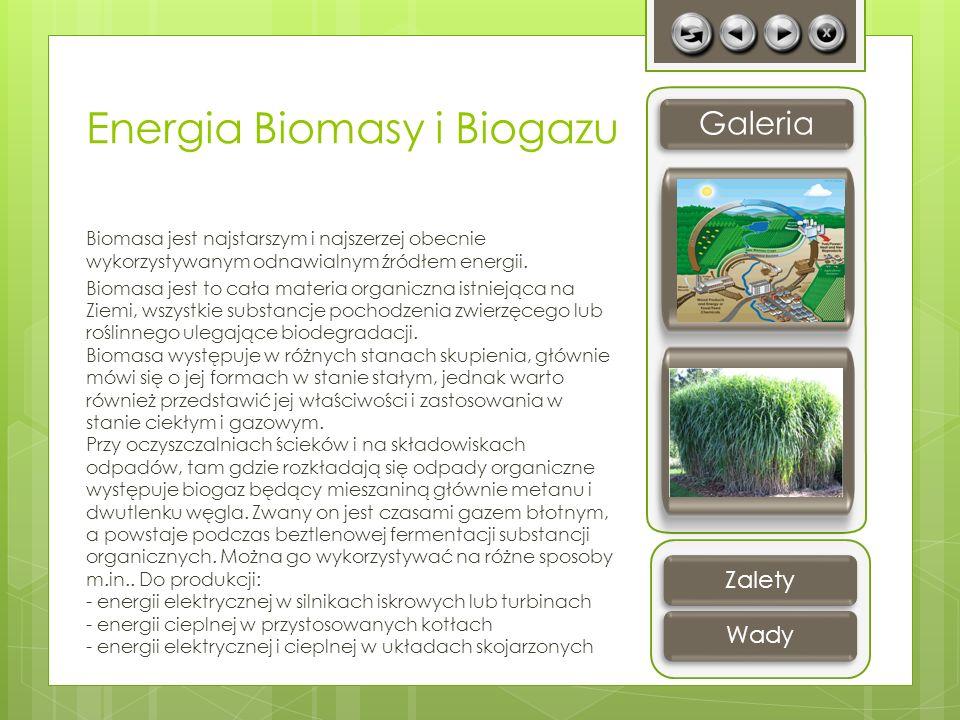 Energia Biomasy i Biogazu Biomasa jest najstarszym i najszerzej obecnie wykorzystywanym odnawialnym źródłem energii. Biomasa jest to cała materia orga