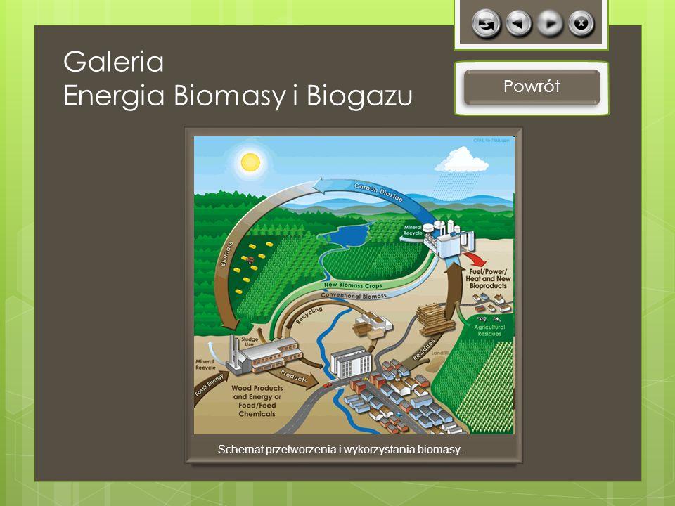 Galeria Energia Biomasy i Biogazu Powrót Schemat przetworzenia i wykorzystania biomasy.
