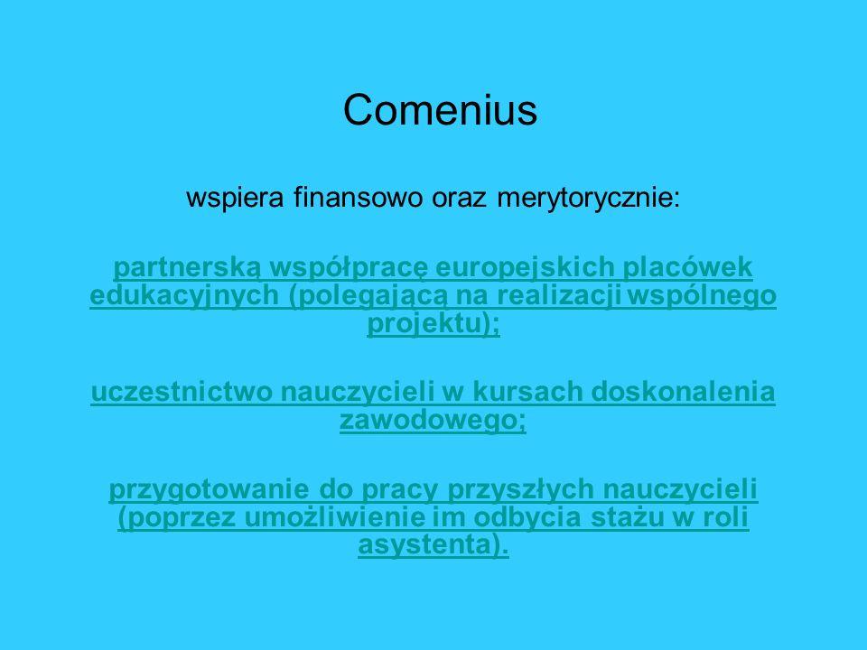 Comenius wspiera finansowo oraz merytorycznie: partnerską współpracę europejskich placówek edukacyjnych (polegającą na realizacji wspólnego projektu);