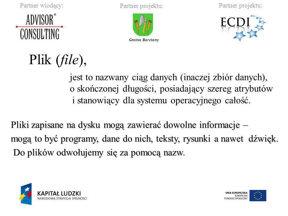 Partner wiodący:Partner projektu: Gmina Barciany Pełna nazwa składa się z dwóch członów: nazwy (podstawowej) i rozszerzenia.