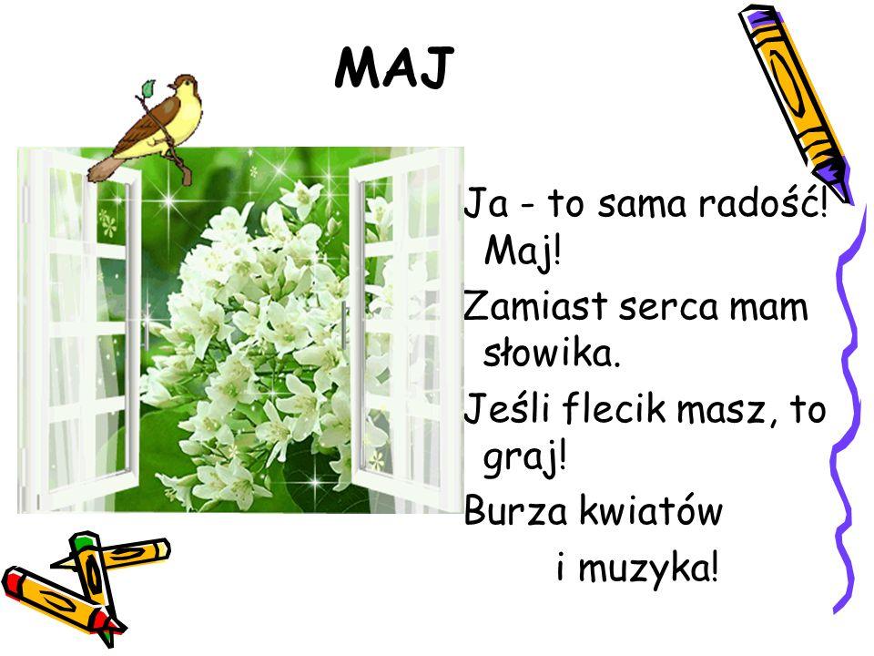MAJ Ja - to sama radość! Maj! Zamiast serca mam słowika. Jeśli flecik masz, to graj! Burza kwiatów i muzyka!