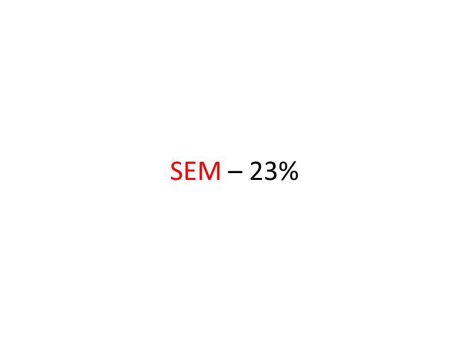 SEM – 23%