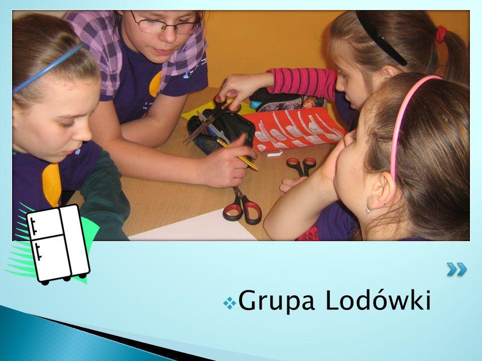 Grupa Lodówki