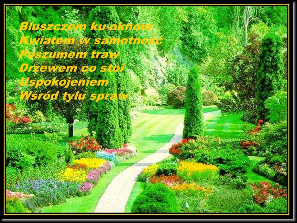 Pamiętajcie o ogrodach Jonasz Kofta