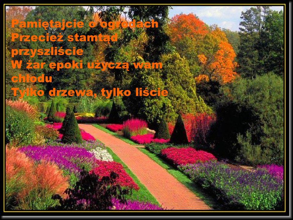Bluszczem ku oknom Kwiatem w samotność Poszumem traw Drzewem co stoi Uspokojeniem Wśród tylu spraw