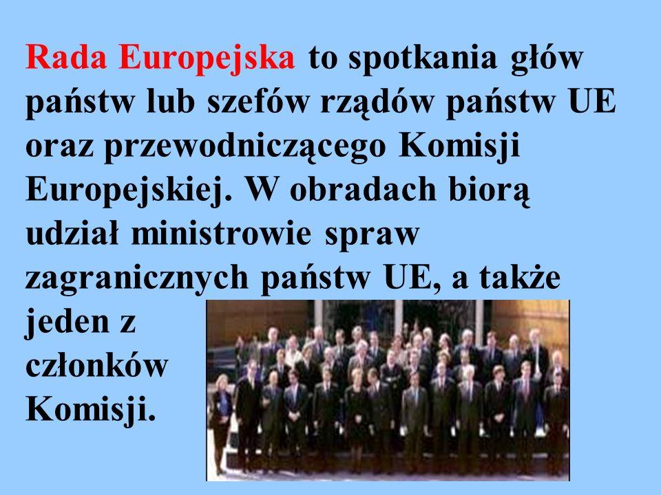 Rada Europejska to spotkania głów państw lub szefów rządów państw UE oraz przewodniczącego Komisji Europejskiej. W obradach biorą udział ministrowie s