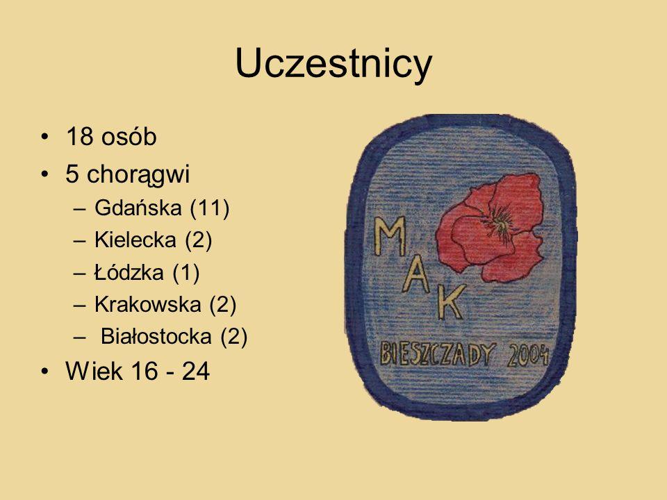 Uczestnicy 18 osób 5 chorągwi –Gdańska (11) –Kielecka (2) –Łódzka (1) –Krakowska (2) – Białostocka (2) Wiek 16 - 24