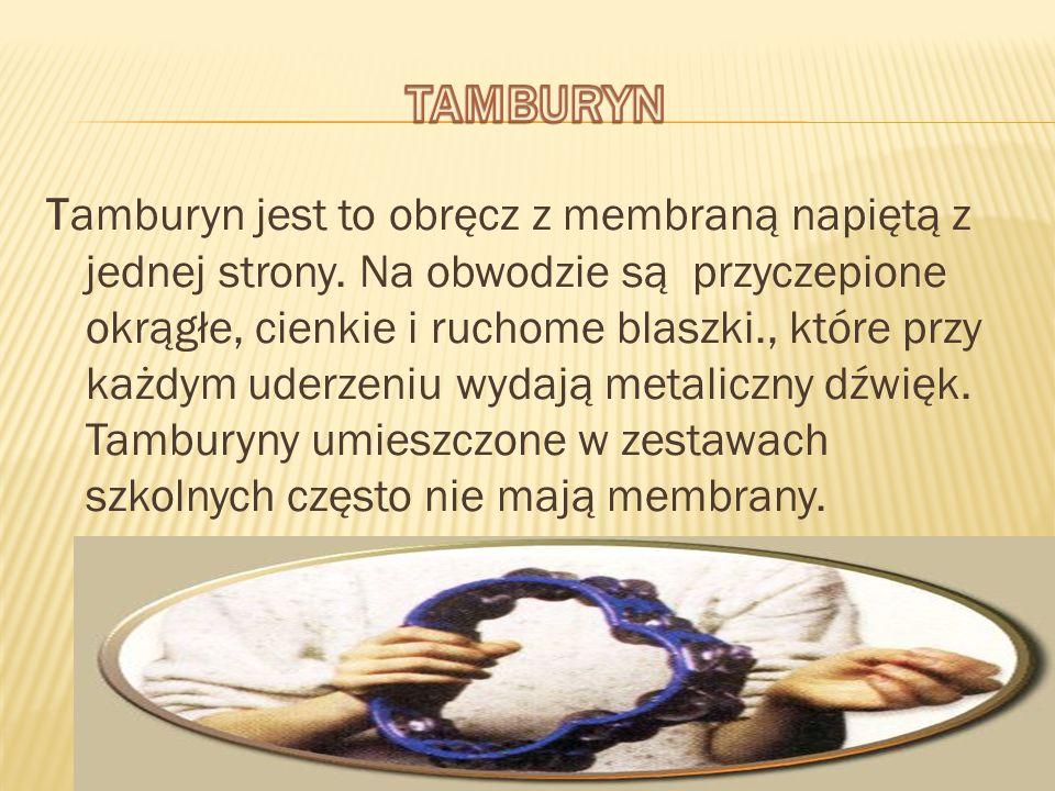 Tamburyn jest to obręcz z membraną napiętą z jednej strony. Na obwodzie są przyczepione okrągłe, cienkie i ruchome blaszki., które przy każdym uderzen