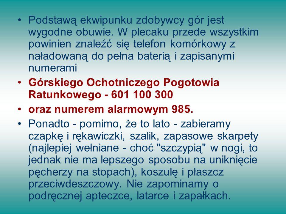 Przed wyruszeniem na szlak, w książce adresowej swojego telefonu warto jeszcze zapisać kontakty ICE, z numerami telefonów osób, które należy powiadomić w razie wypadku.