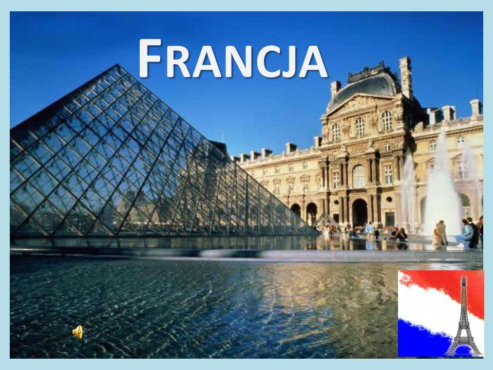 Słynni Francuzi Louis Pasteur wynalazł szczepionkę przeciw wściekliźnie Gustave Alexandre Eiffel - architekt, specjalista od konstrukcji żelaznych, zaprojektował Kanał Panamski, Statuę Wolności, Wieżę Eiffela Blaise Pascal matematyk, autor Prawa Pascala Michel Platini Prezydent UEFA