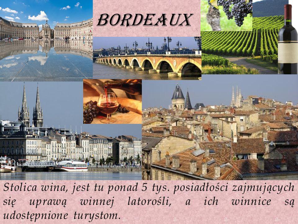 bordeaux Stolica wina, jest tu ponad 5 tys. posiadłości zajmujących się uprawą winnej latorośli, a ich winnice są udostępnione turystom.