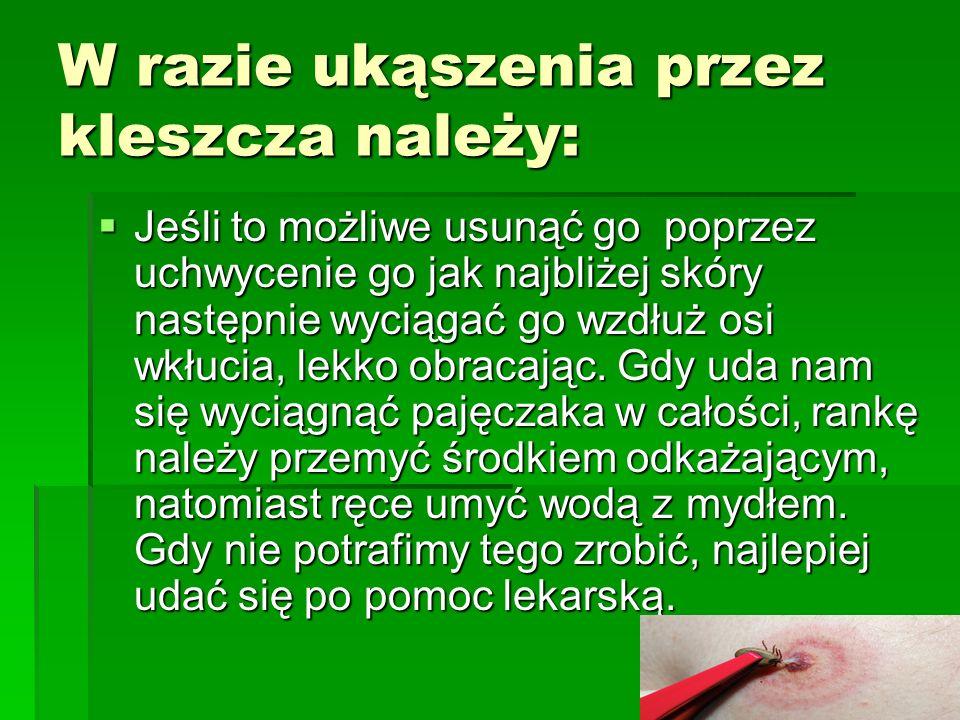 Miejsca występowania kleszczy w Polsce
