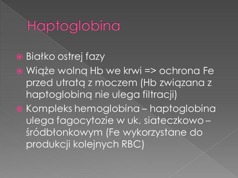 Białko ostrej fazy Wiąże wolną Hb we krwi => ochrona Fe przed utratą z moczem (Hb związana z haptoglobiną nie ulega filtracji) Kompleks hemoglobina –
