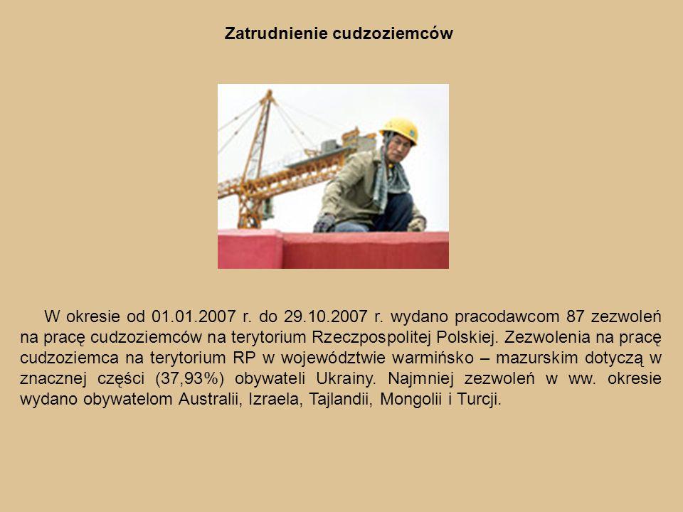 Zatrudnienie cudzoziemców W okresie od 01.01.2007 r.
