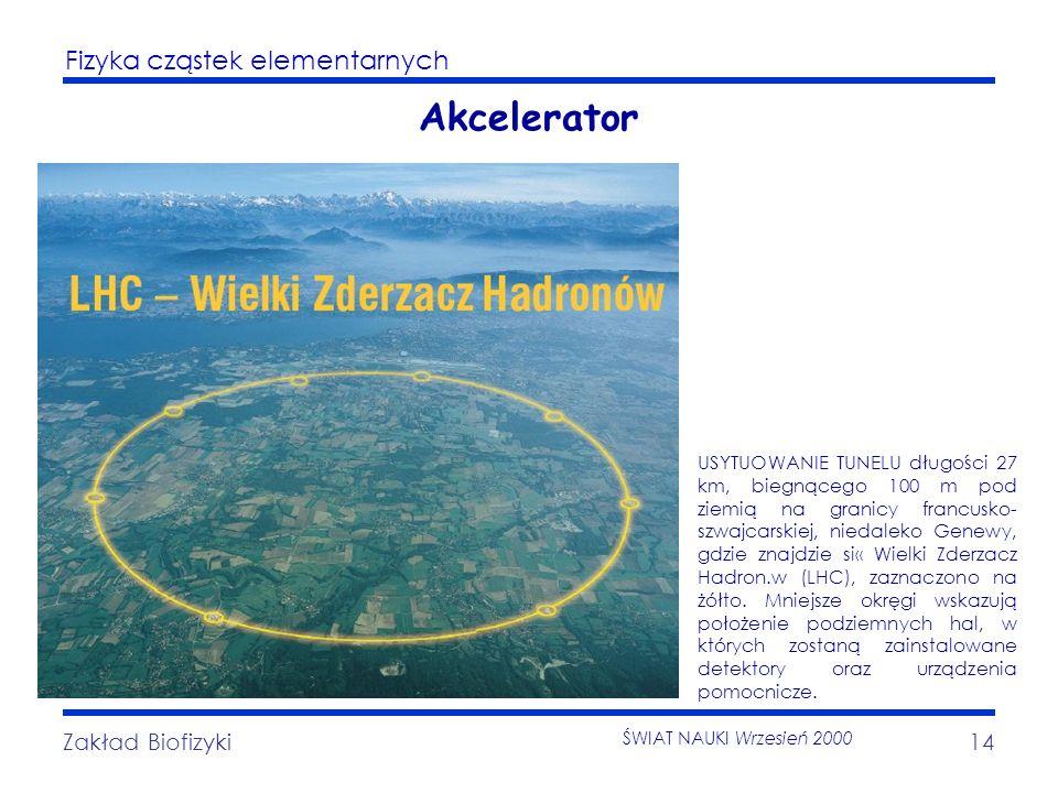 Fizyka cząstek elementarnych Zakład Biofizyki14 Akcelerator USYTUOWANIE TUNELU długości 27 km, biegnącego 100 m pod ziemią na granicy francusko- szwaj