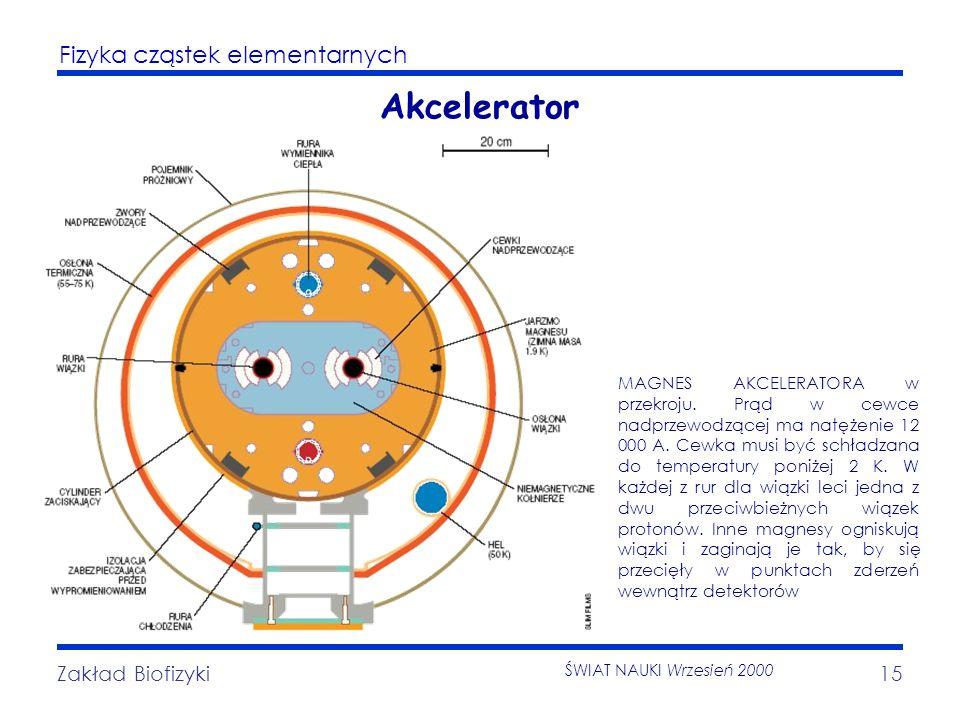 Fizyka cząstek elementarnych Zakład Biofizyki15 Akcelerator MAGNES AKCELERATORA w przekroju. Prąd w cewce nadprzewodzącej ma natężenie 12 000 A. Cewka